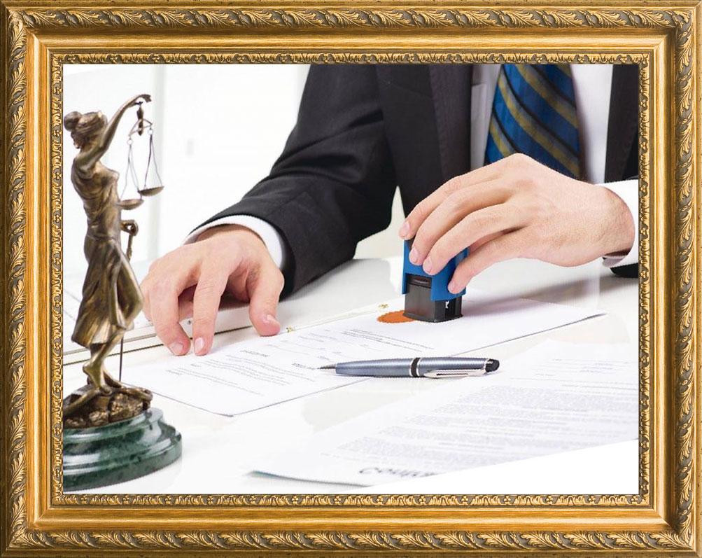 la Ley de Contratación Pública